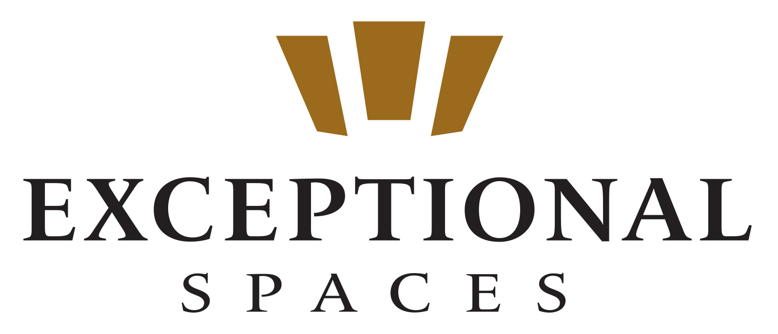 Exceptional Spaces